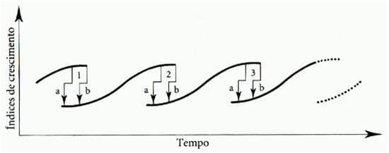 Gráfico Tempo x Índice de Crescimento: A área situada entre os pontos a e b representam os períodos de transição.