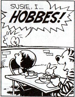 """""""Repórter: Qual é o seu Hobbes? Caral Peres: Ah, o meu é azul!"""""""